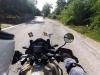 Buzzard and bike in disharmony 1