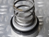 Piston, seal and spring